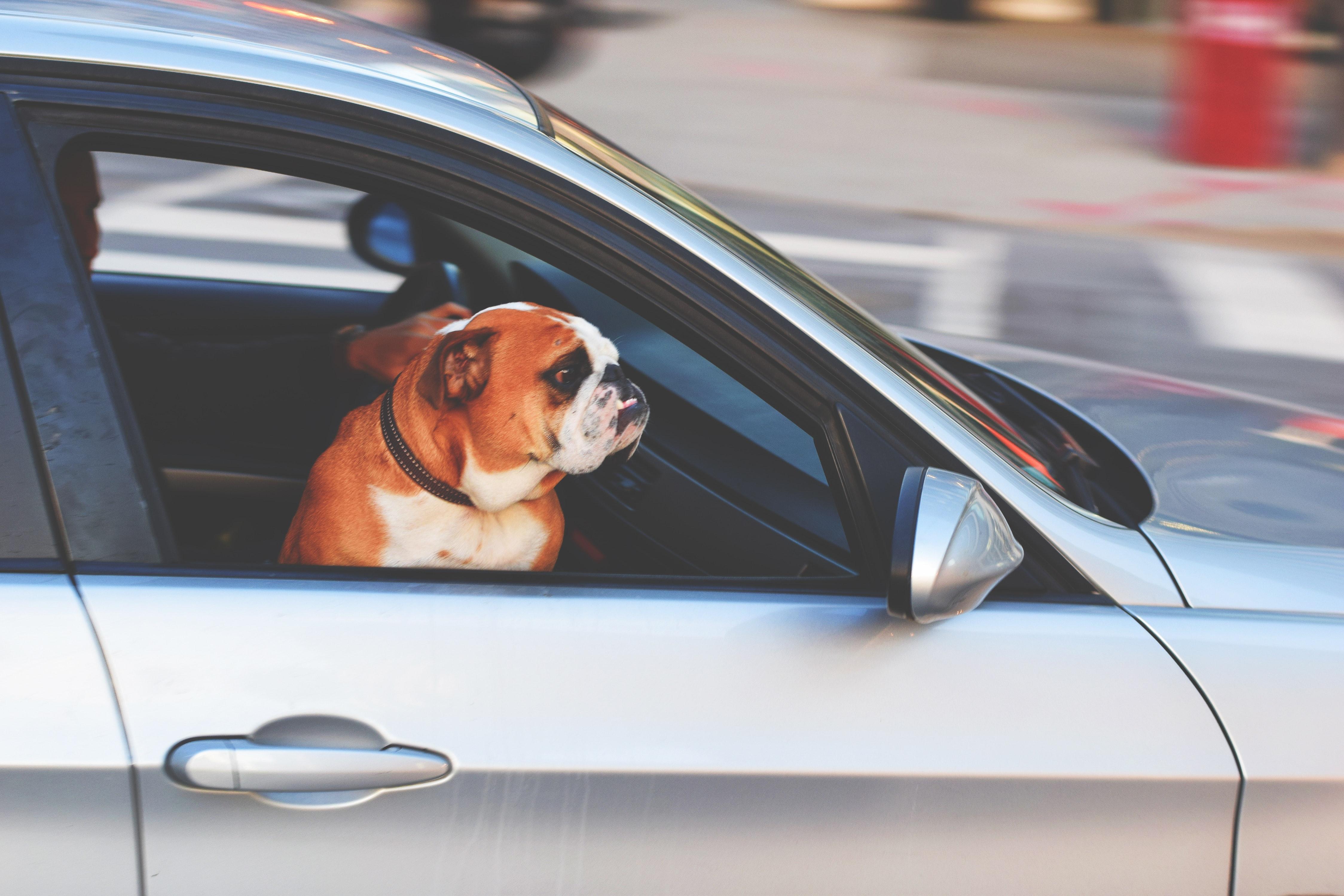 Crash Course Driving Glasgow